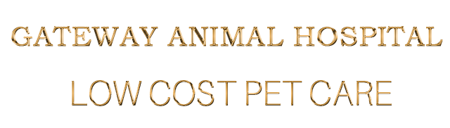 cropped-Logo-Mobile-R2-GOLD-Animals-Hospital.png